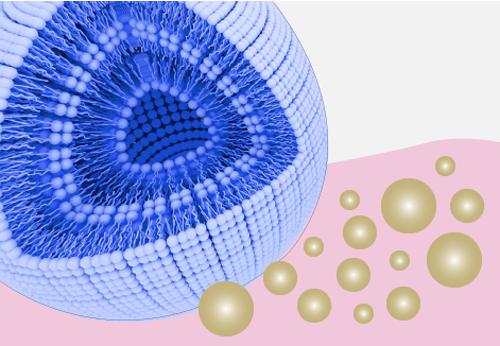 Microspheres 2
